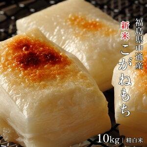新米 米 送料無料 10kg 10キロ 令和2年産福島県産 こがねもち 精白米お正月 餅つき 杵つきもち お雑煮餅 焼きもち いそべもち 赤飯 ライスケーキ