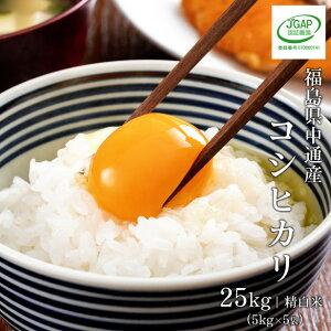 米 25kg 25キロ 令和元年産 送料無料福島県 中通産 コシヒカリ 精白米 (5kg×5袋) 小分け須賀川市産白米 米 こめ お米 低温貯蔵