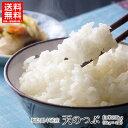 【福島クーポンで10%オフ】米 20kg 20キロ 令和2年産 送料無料 白米福島県 中通産 天のつぶ 精白米 (5kg×4袋) 小分…
