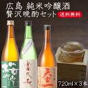 贅沢晩酌3本セット 広島純米吟醸酒B 720ml×3本 富久長 桜吹雪 天寶一 日本酒 飲み比べ ギフト プレゼント 御祝 御礼 …