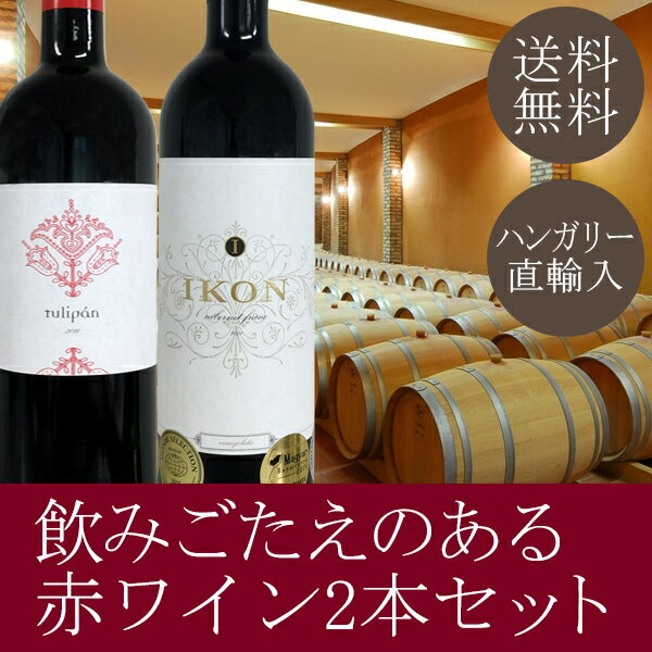 【送料無料】熟成ボルドータイプの赤ワイン2本セット。IKONワイナリー「エバンジェリスタ カベルネ・フラン」「トリパン」※ギフト箱包装。ギフトにもオススメです。