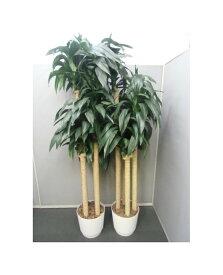 【中古品】観葉植物 鉢植え フェイクグリーン 2台セット