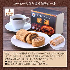 コーヒーの木セット