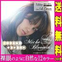 Miche Bloomin' ミッシュブルーミン カラコンワンデーカラコン 1箱10枚 度なし/度あり クォーターヴェールシリーズ/…
