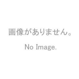 換気口 交換用フィルター(SRKV-150F用) 神栄ホームクリエイト FR-KV150【メーカー取り寄せ品】
