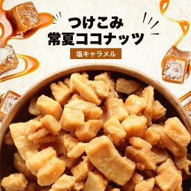 【新商品】 つけこみ常夏ココナッツ 塩キャラメル 50g 【メール便A】【TSG】