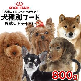 ロイヤルカナン 犬種別シリーズ お試し800g / ダックスフンド チワワ プードル 柴犬 ヨークシャーテリア / 子犬 成犬 高齢犬 / お試しサイズ【RCA】