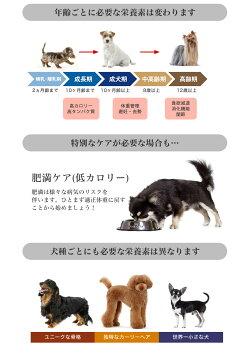 ロイヤルカナン犬種別シリーズお試し800g/ダックスフンドチワワプードル柴犬/子犬成犬高齢犬/お試しサイズ