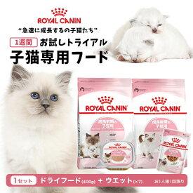 ロイヤルカナン 子猫用 お試しスターターセット キトン マザー&ベビーキャット お試し1WEEK(DRY×1・WET×7) royal cain[rev_c]