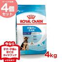 【お得な4セット】ロイヤルカナン マキシ ジュニア 4kg×4個 生後5ヵ月〜15ヵ月齢未満の大型犬に ドッグフード 子犬 …
