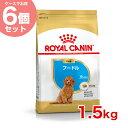 【あす楽】【お得な6個セット】ロイヤルカナン プードル 1.5kg / 子犬用 生後4ヵ月〜10ヵ月齢まで/ 犬 /[ROYAL CANIN …