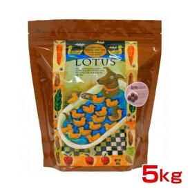 ロータスジャパン 穀物不使用 グレインフリー ダックレシピ 成犬用 小粒 5kg 4582259271326 #w-150291
