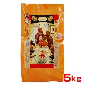 ロータスジャパン 穀物不使用 グレインフリー ターキーレシピ 成犬用 小粒 5kg 4582259271371 #w-150295