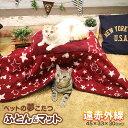 [キャティーマン]CattyMan 遠赤外線 ペットの夢こたつ 一式セット / 4976555949735 あったか 遠赤外線 猫用 こたつ も…