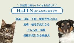 PREMIUM乳酸菌H&J・I・N1g×30包/高品質乳酸菌:EF-2001配合ヒューマングレード[人間もOK!]動物用乳酸菌サプリ犬猫小動物4589961810027#w-156331-00-00