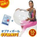 【特典 DVD付き】バランスボール 直径 55cm ギムニク・オプティボール【送料無料】
