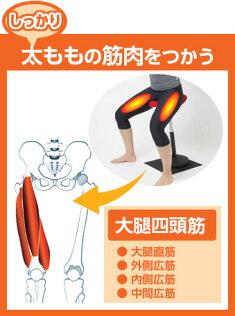 スクワットシェイプ(東急スポーツオアシス筋トレダイエット腹筋脚力アップ【送料無料】