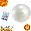 【特典 DVD付き】ギムニク フィットボール バランスボール パールホワイト 直径 55cm