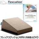 サンテプラス フレックスクッション MINI(子供用)&DVDセット
