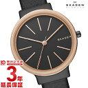 【新作】スカーゲン SKAGEN アンカー SKW2480 [海外輸入品] レディース 腕時計 時計