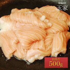 神戸牛のルーツ黒毛和牛◎但馬牛 ホルモン(大腸) 500g(冷蔵) 国産 牛肉 てっちゃん もつ鍋 シマチョウ 肉 テッチャン しまちょう