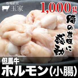 【送料無料】神戸牛のルーツ黒毛和牛◎国産 但馬牛 ホルモン(小腸) 1,000g(冷蔵) 牛肉 こてっちゃん 肉 牛肉 コテッチャン