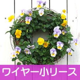 【ワイヤー小セット】花苗で作る ハンギングリース 壁掛け鉢 メッシュタイプ[FMP01-30Gセット]クリスマスリース ビオラリース