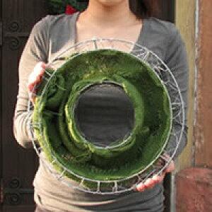 【ワイヤー小カゴのみ】花苗で作る ハンギングリース 壁掛け鉢 単品(FMP01-30Gのみ)クリスマスリース ビオラリース