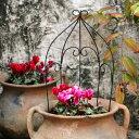 鉢にも飾れる ガーデニング ミニトレリス バルーン