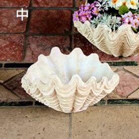 アンティーク シャコ貝 寄せ植え 鉢 中サイズ 約6号(3412)