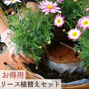 【リース植替えセット】ペルー産水苔150g+[リース専用土5L×6袋](ハンギング用)