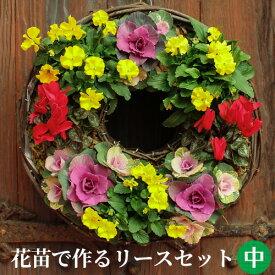 [定番 中] リース セット 花苗で作る ハンギングリース 壁掛け 鉢
