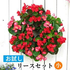 【ポイント3倍】[お試し]小 リース セット 花苗で作る ハンギングリース 壁掛け 鉢