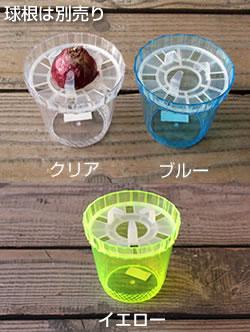 プラ製 水栽培 専用 ヒヤシンス ポット(鉢)【1球用】