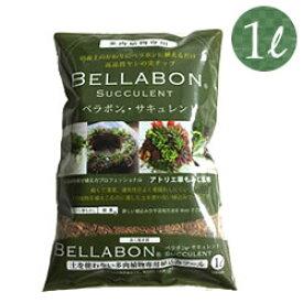 【多肉植物 培養土】ベラボン・サキュレント1L