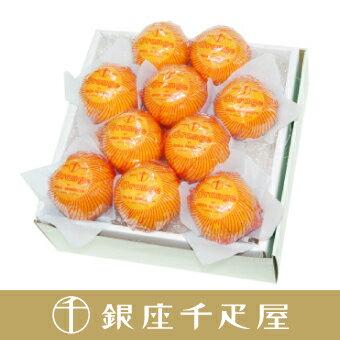 銀座千疋屋特選 オレンジ詰合せ10個入[ギフト][内祝い][お歳暮]
