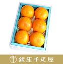 銀座千疋屋特選オレンジ12個入