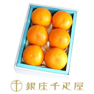 銀座千疋屋特選 天草オレンジ6個入 千疋屋 フルーツ ギフト 内祝い お歳暮 クリスマス
