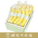 銀座千疋屋特選 バナナ10本入