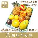 [内祝い]【送料込み】銀座千疋屋特選 【感謝の気持ち】季節の果物詰合