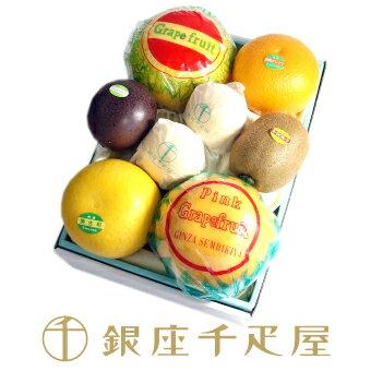 銀座千疋屋特選 【感謝の気持ち】季節の果物詰合せ[ギフト][内祝い]