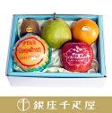 サンタからの贈りもの(季節の果物詰合せ1お届け期間:12/20〜12/25)