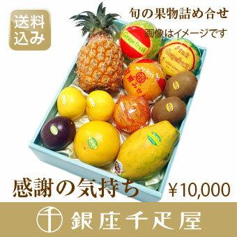 [送料込み]銀座千疋屋特選 【感謝の気持ち】季節の果物詰合[お中元][ギフト][内祝い]