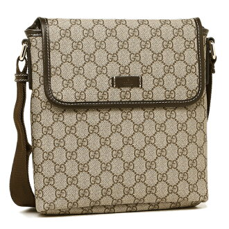 Gucci bag GUCCI 223666 KGDIG 8588 GG plus shoulder bag beige / dark brown