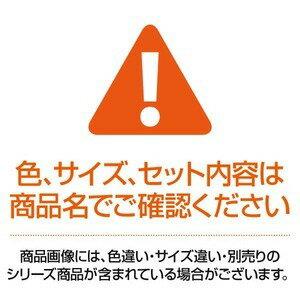(業務用100セット)LIHITLABクリアファイル/クリアホルダー【B5】5枚F-76-3赤