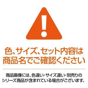 (業務用100セット)LIHITLABクリアファイル/ポケットファイル【A4/A3】タテ型/サイドイン40ポケット固定式G3401-8青