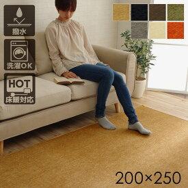 【マラソンでポイント最大44倍】ラグマット 絨毯 洗える 無地カラー 選べる7色 『モデルノ』 グレー 約200×250cm