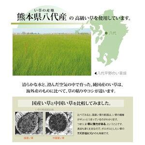 純国産い草上敷きカーペット麻綿織『清正』江戸間6畳(約261×352cm)熊本県八代産イ草使用