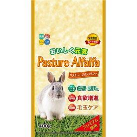(まとめ) パスチャーアルファルファ 400g 【×6セット】 (ペット用品)