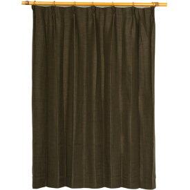 カーテン 洗える ウォッシャブル 洗える 防炎 2級遮光 150×丈178cm ブラウン アール 九装
